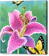 Lily And Butterflies Acrylic Print