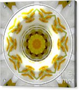 Lily And Daffodil Kaleidoscope Under Glass Acrylic Print
