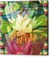 Lily Birth Acrylic Print