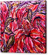 Lily Glow Acrylic Print