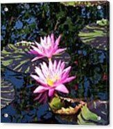 Lily Monet Acrylic Print