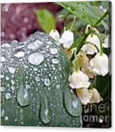 Lily Of The Valley After The Rain Acrylic Print