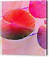 Lily Pad 3 Acrylic Print