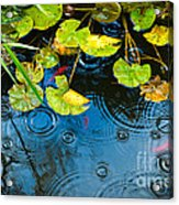 Lily Pads Ripples And Gold Fish Acrylic Print