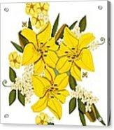 Lily Triplets Acrylic Print