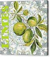 Limes On Damask Acrylic Print