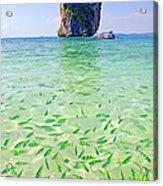 Limestone Karst In Andaman Sea, Koh Poda Acrylic Print