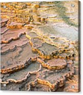 Limestone Terraces Yellowstone National Park Acrylic Print