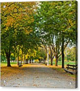 Lincoln Park In Fall Acrylic Print