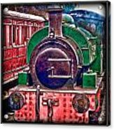 Line And Ink Loco Acrylic Print