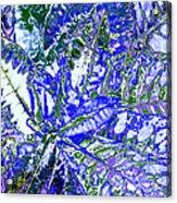 Line Texture Colour Acrylic Print