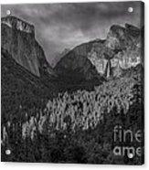Lingering Shadows In Grey Acrylic Print