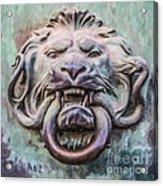 Lion And Snake Acrylic Print