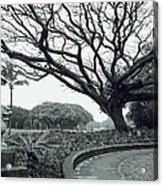Lion Dog And Tree - Liliuokalani Park - Hawaii Acrylic Print