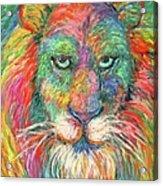 Lion Explosion Acrylic Print