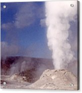 Lion Geyser In Full Vent Mode Acrylic Print