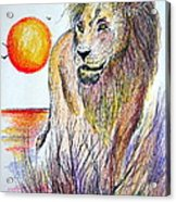 Lion Of Lions Acrylic Print