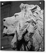 Lion Of The Art Institute Chicago B W Acrylic Print