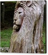 Lion Tree Acrylic Print