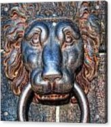 Lions Head Knocker Acrylic Print