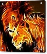 Lions In Love Acrylic Print by Pamela Johnson