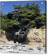 Den Of The Coastal Bigfoot Acrylic Print