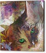 Lisa Beckons - Square Version Acrylic Print