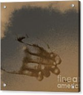 Listen To The Sky Acrylic Print by Steven Digman