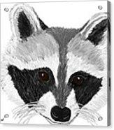 Little Bandit - Raccoon Acrylic Print by Elizabeth S Zulauf