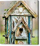 Little Birdhouse Acrylic Print