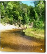 Little Black Creek - Hoffmaster State Park Acrylic Print