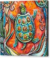 Little Brother Turtle II Acrylic Print