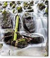 Little Cascade In Marlay Park Acrylic Print