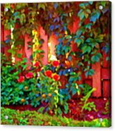 Little Country Scene Pink Flowers Climbing Leaves On Wood Fence Colors Of Quebec Art Carole Spandau Acrylic Print