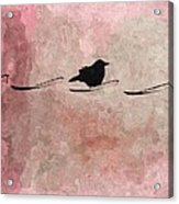 Little Crow In The Pink Acrylic Print