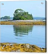 Little French Island In Maine Acrylic Print