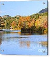 Little Long Pond And Bubbles Mount Desert Island Maine Acrylic Print
