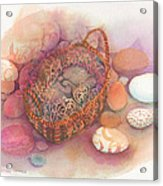 Little Mouse Nap Acrylic Print