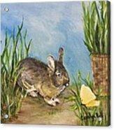 Little Pet Bunny Acrylic Print