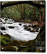Little Pigeon River In The Smokies Acrylic Print