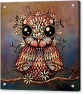 Little Rainbow Flower Owl Acrylic Print