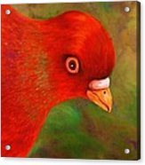 Little Red Acrylic Print by Terry Jackson