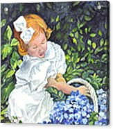 Sophies Hydrangeas Acrylic Print