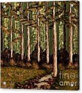 Little Stream In The Deep Woods II Acrylic Print