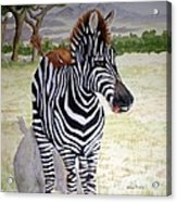 Little Stripes Acrylic Print