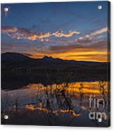 Little Washoe Summer Reflections Acrylic Print