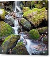 Little Waterfall In Marlay Park Acrylic Print