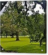 Live Oak Tree At Oak Alley Plantation Acrylic Print