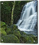 Living Water Acrylic Print