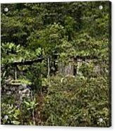 Living With Nature Acrylic Print